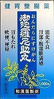 【第3類医薬品】御陀羅尼助丸 1000丸