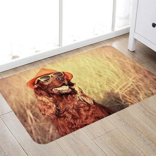 Alfombra de baño súper Suave de 50 x 80 cm,Decoración de Animales, Divertido Perro Setter irlandés Retro con Sombrero y Gafas de Sol, Imagen Alfombra de baño Absorbente Antideslizante
