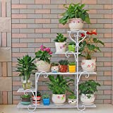 ★ Le nombre de couches de bonsaï peut être placé: 5 couches, taille: 48 * 23 * 75 cm / 68 * 23 * 85 cm / 88 * 25 * 95 cm (longueur * largeur * hauteur), trois couleurs en option ★ Fait à la main, cadre fleur fait de tuyaux en acier, soudé à la main, ...