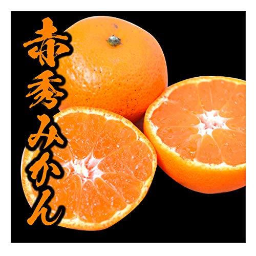 みかん 和歌山県産 赤秀みかん 完熟 送料無料 産地直送 甘い 選別済 (5kg)