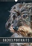 Dackelportraits (Wandkalender 2020 DIN A4 hoch): In diesem Dackelkalender präsentieren sich Rauhaardackel von ihrer schönsten Seite. (Planer, 14 Seiten ) (CALVENDO Tiere) - Susann Kuhr