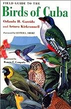 Best how to catch wild birds Reviews