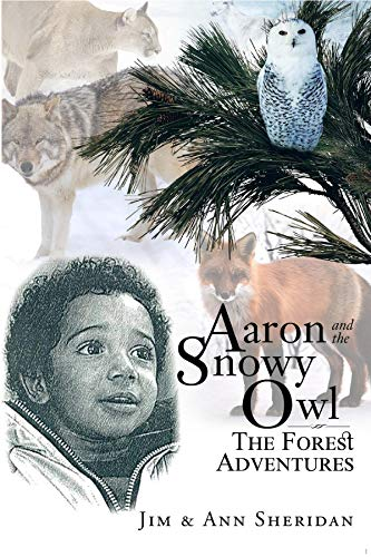 Aaron and the Snowy Owl: The Forest Adventures (English Edition)