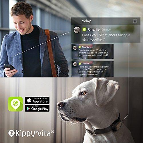 Kippy Vita kv0001bl GPS und Activity Tracker für Haustiere Abbildung 2