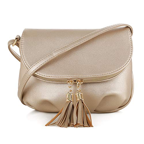 """Perfect size - 8.5"""" (L) x 1.5""""(W) x 7""""(H), weight 0.7 lb. Stylish - Gold-tone hardware zipper and magnet clip closure with adjustable strap 13 - 23 inch drop Functional - Dual compartments. 1 zipper for the main compartment; 1 compartments with 1 int..."""