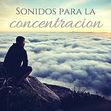Sonidos para la concentracion – Musica de fondo de la naturaleza para aprender y leer, estudio, relajacion