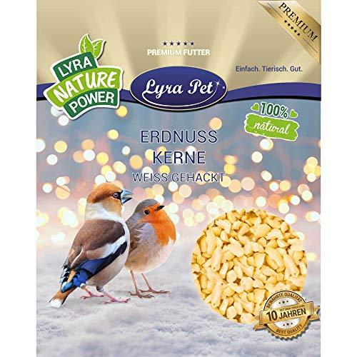 Lyra Pet® 25 kg Erdnusskerne weiß gehackt HK Indien Wildvogelfutter Ganzjahresfutter Körner Erdnussbruch Erdnüsse Vogelfutter