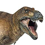 PNSO Dinosaur Museums Series New Wilson The Tyrannosaurus rex 1:35 Scientific Art Models