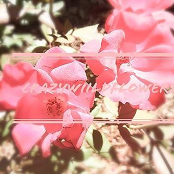 crazywiildflowers
