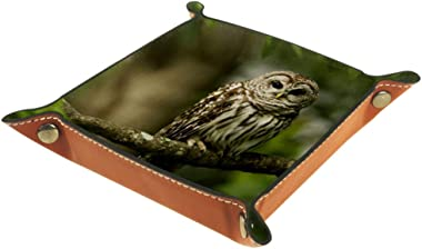Owl Bird in Tree Valet Tray Storage Organizer Box Coin Tray Key Tray Nightstand Desk Microfiber Leather Pouch,16x16cm