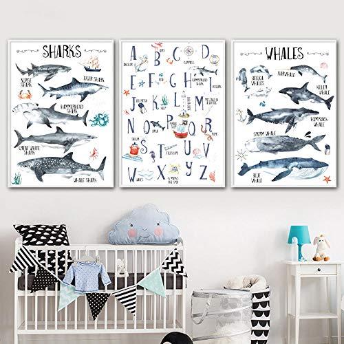 Alfabeto di squalo Biologia Marina Libro Illustrato Cameretta per Bambini Scuola Materna Stampe murali Adesivi murali Poster in Tela   40x60cmx3 Senza Cornice