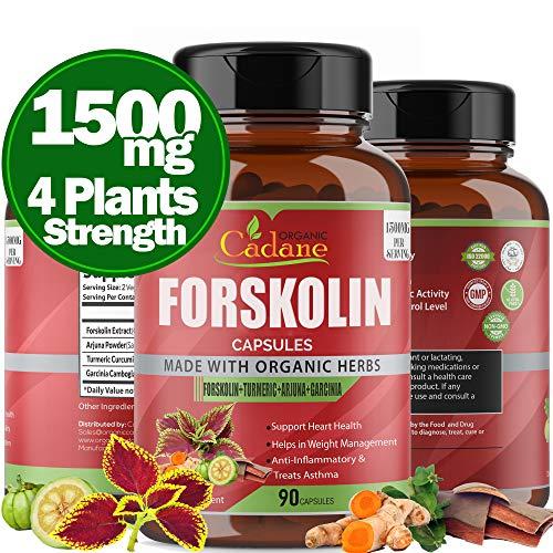Organic Forskolin Extract Capsules 1500MG with Turmeric Curcumin, Arjuna, Garcinia Cambogia Powder Maximum Strength India Supplement Support Nourishing Diet Coleus Forskohlii Energy Booster, 90Caps