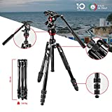 Manfrotto MVKBFRT-LIVE Befree Live Travel Tripod, Twist Lock with MVH400AH Fluid Head