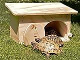 - Blitzen - Caseta de refugio con base para tortugas de tierra. Producto fabricado...