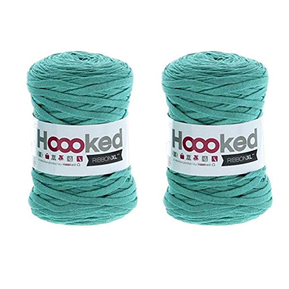 Hoooked Ribbon XL Yarn (2 Pack) - Happy Mint (RXL SP7)