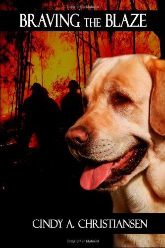 Book: Braving the Blaze by Cindy A. Christiansen