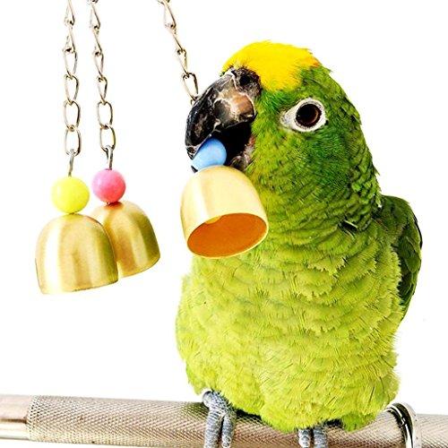 Vogelspielzeug, Glocken aus Edelstahl zum Aufhängen im Käfig für Sittiche, Kakadus, Aras, Graupapageien, Amazonen, Nymphensittiche, Wellensittich und Finken