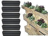Bada Bing 6er Set Pflanzschale für Palette Ca. 9,5 x 36 x 14 cm Kunststoff Anthrazit Grau Blumenkasten Saattopf Einsatz für Europalette Kräutertopf Pflanztopf Pflanzgefäß Deko Garten Trend 37