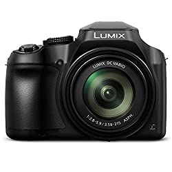 PANASONIC LUMIX FZ80 4K Digital Camera, 18.1 Megapixel Video Camera, 60X Zoom DC VARIO 20-1200mm Lens, F2.8-5.9 Aperture, POWER O.I.S. Stabilization, Touch Enabled 3- inch LCD, Wi-Fi, DC-FZ80K (Black)