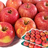 りんご 10kg箱 ふじ 訳あり 青森 10キロ箱 林檎