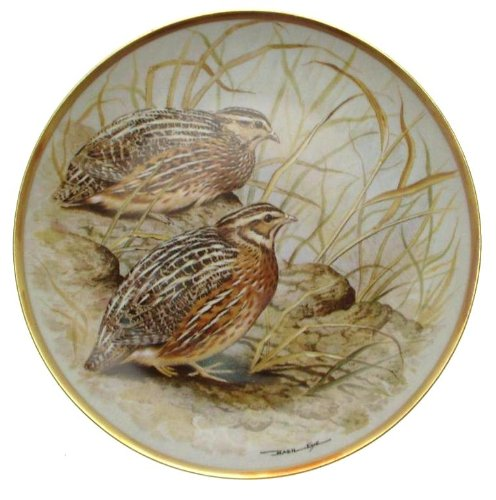 C1979Haviland-Limoges Franklin Porzellan gamebirds der Welt Basilikum Ede Wachtel Teller cp1882
