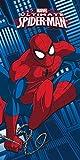 Star Licensing 45356Toalla Playa Spiderman, algodón, 140x 70x 0.5cm