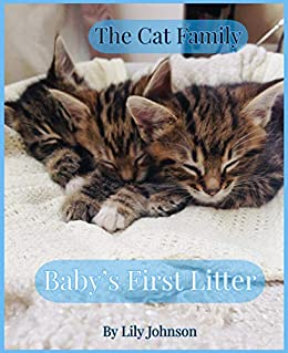 The Cat Family Picture Book Baby S First Litter Super Adorable Cute Kittens Our Family Of Cats Book 1 Kindle Edition By Johnson Lily Children Kindle Ebooks Amazon Com