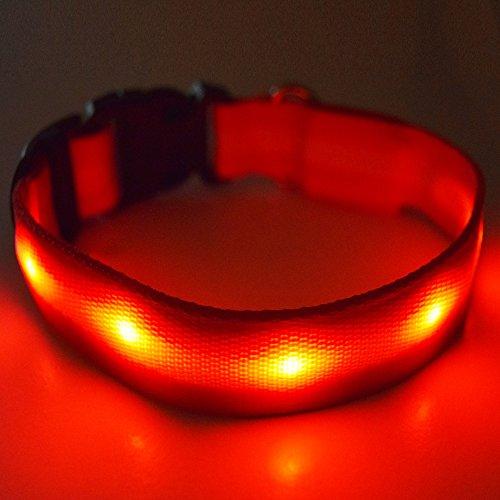 Fun Pets Collier de sécurité LED pour Chien Rechargeable Grand (40 cm - 60 cm / 15,7\