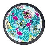 Manijas para cajones Perillas para gabinetes Perillas Redondas Paquete de 4 para armario, cajón, cómoda, cómoda, etc. - Ilustración de vector de flor de flamenco