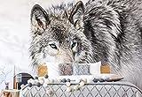 Papel tapiz Foto Papel tapiz Fotomural Lobo Animal -...