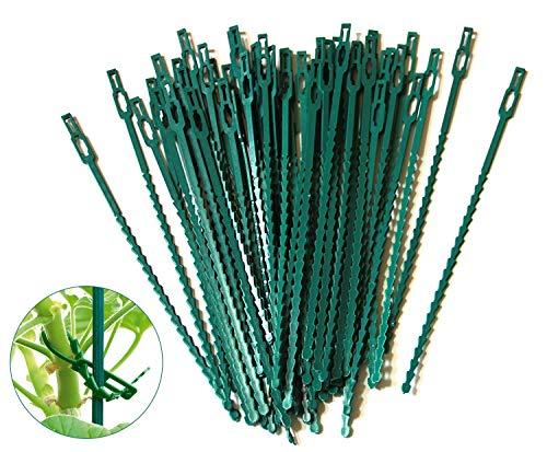 Auvstar 100 piezas Fijación Reutilizable Plantas
