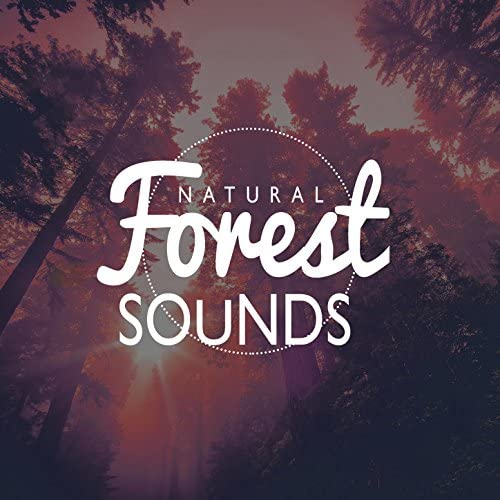 Nature Sound Collection, Nature Sounds & Outside Broadcast Recordings