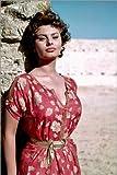 Poster 60 x 90 cm: Sophia Loren von Everett Collection -