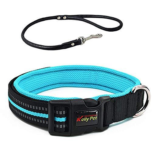 TaimeiMao Hundehalsband, katzenhalsband mit sicherheitsverschluss,Schnellverschluss Katzenhalsband,Reflektierendes Katzenhalsband,verstellbar Nylon Katzenhalsband (M, Blau)