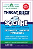 Throat Discs Throat Lozenges Original Formula 46 Lozenges (Value Pack of 2)