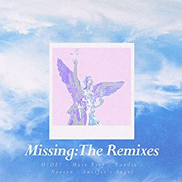 Missing: The Remixes