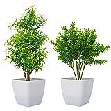 Huryfox Artificial Plants Indoors in Pots, Autumn Room Decor Fake Plants Aesthetic Home Decorations for Bedroom Garden Indoor Outdoor, 2 Pack