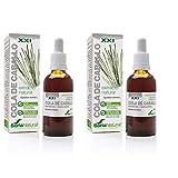 Soria Natural - EXTRACTO DE COLA DE CABALLO S. XXI - Extracto Natural - Fuerza uñas y cabello y disminuye retención de líquidos - 50 ml - Equisetum arvense (PACK2)