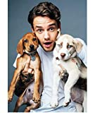 ZHAONING Canvas Poster Liam Payne Portrait Paintings Poster