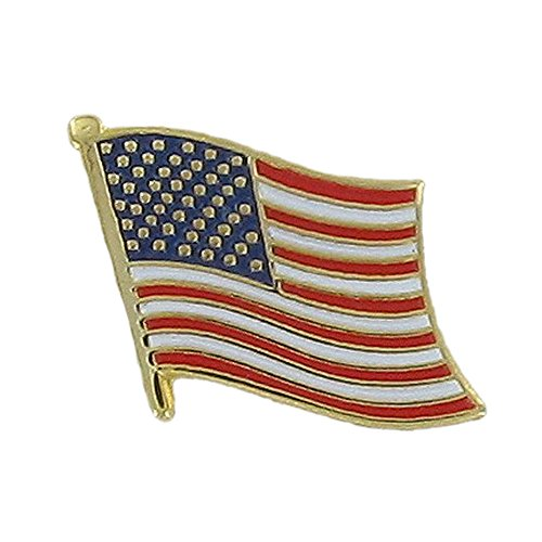 Awards and Gifts R Us American Flag Lapel Pin, 7/8 inch - Pack of 8