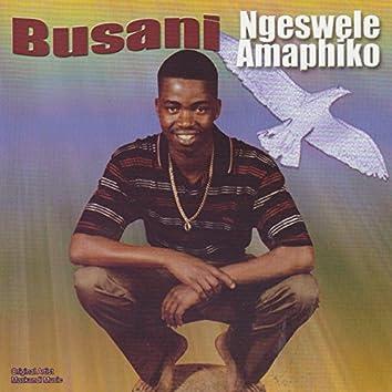 Ngeswele Amaphiko