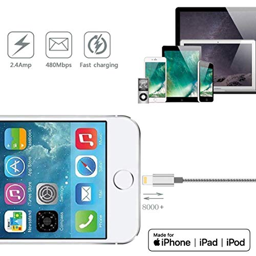 iPhone Lightning Cable Long Power Cord Certified 4Pack(10ft 6ft 6ft 3ft) Braided Nylon Fast Charger Cable Compatible iPhone 11 Pro Max XS XR 8 Plus 7 Plus 6s 5s 5c Air iPad Mini iPod (Gray White)