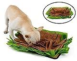 Alfombra olfativa para Perro - Marrones y Verdes