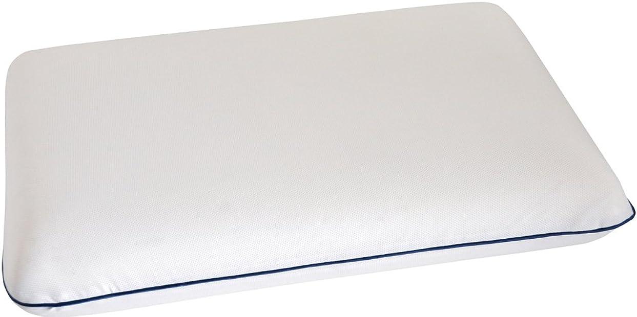プリーツルビーソフィーe-sleep エクセレントピロー スーパーフィット 粘弾性まくら 専用ピロケース付き 40×60cm SEP0019103