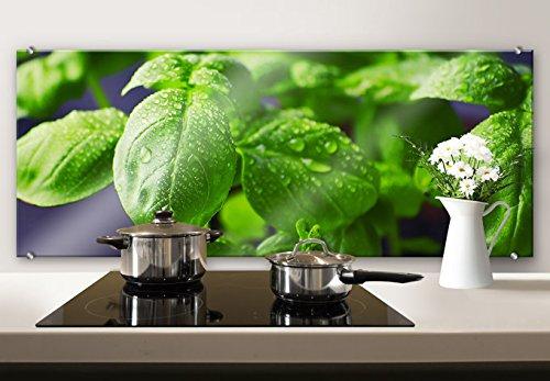 Spritzschutz Glasbild - Frisches Basilikum - Panorama - Küchenspritzschutz - mit abgerundeten Ecken - 100x40 cm mit Klemmbefestigungen - SP46232 - Wall-Art