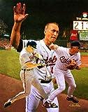 Cal Ripken Jr Baltimore Orioles 3rd Base Shortstop MLB Baseball Stadium Art Print 11x14-48x36