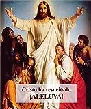 Colgadura de la Resurrección de Cristo