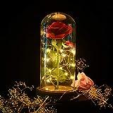 shirylzee La Bella e La Bestia Rosa Eterna Luce di Vetro Rosa Cupola Luce a LED Fiore Artificiale Seta Rossa con Base Legno Lampada Decorazioni Regalo per Anniversario San Valentino Compleanno
