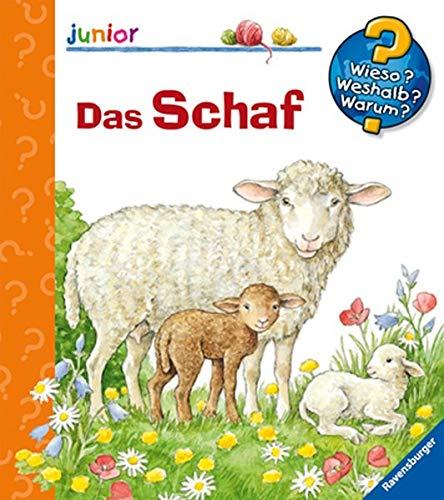 Das Schaf (Wieso? Weshalb? Warum? junior, Band 29)