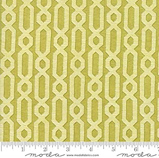 Dandi Annie by Robin Pickens Quilt Fabric Chain Lattice Leaf Style 48634/17